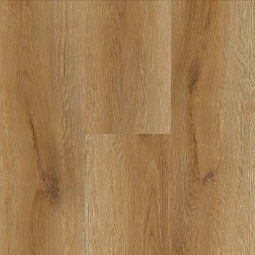 Experto APOLLO Traditional Oak 1832