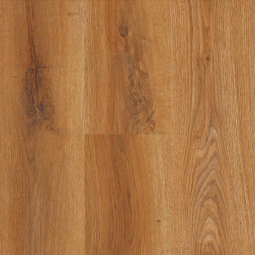 Experto APOLLO Traditional Oak 1866
