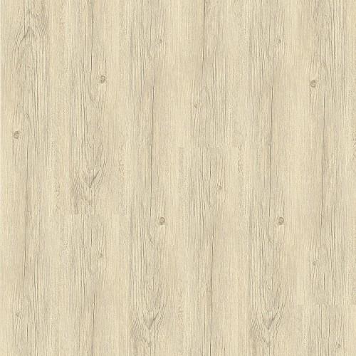 Floor Forever Primero Click 24115 Borovice Polární