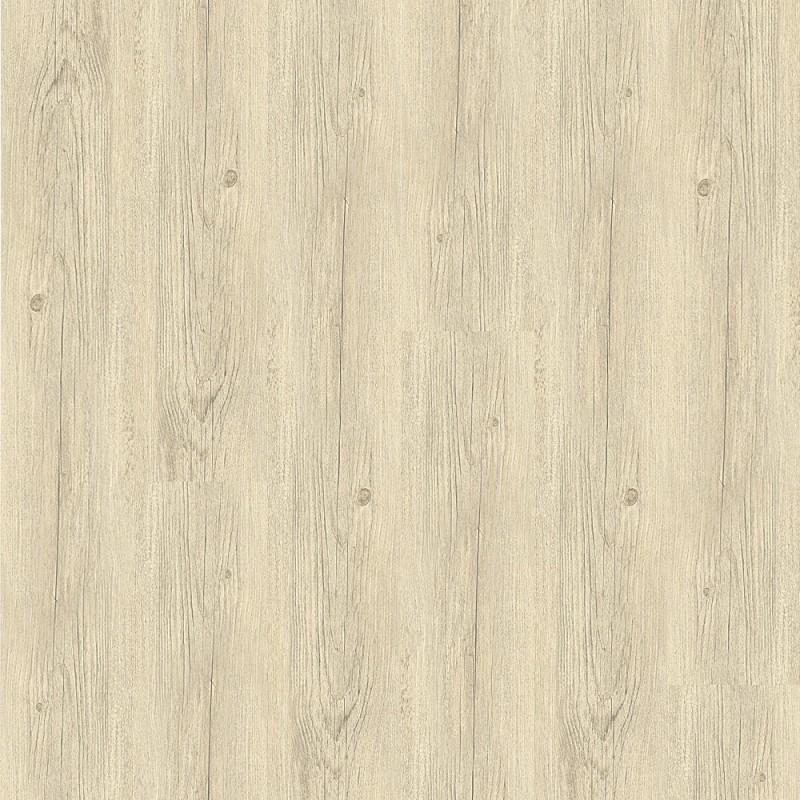 Balíček - Primero Click - 24115-Borovice-Polární