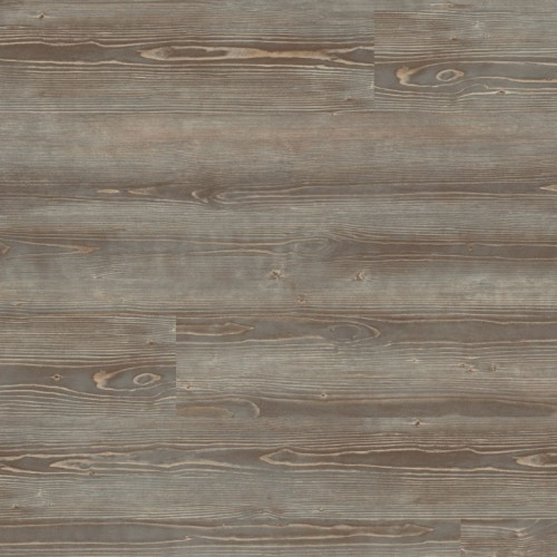 Expona Domestic 5979 Grey Pine